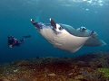 What a day :-)